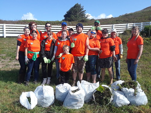 Volunteers Sought For Great American Cleanup